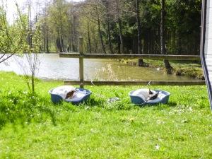 7-10 april 2014 - Franse Ardennen (19)