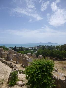 DeKriebelOpReis Carthago (2)