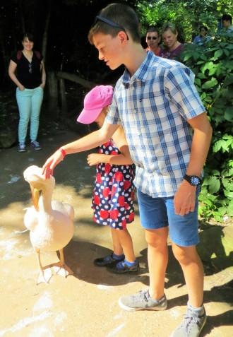 dekriebelopreis hannover zoo erlebnis (2)