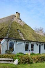 DeKriebelOpReis @Texel boerderij De Waddel (3)